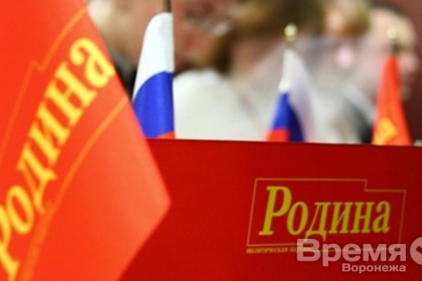 Реанимированная партия «Родина» примет участие в ближайших выборах в Воронеже под руководством строителя