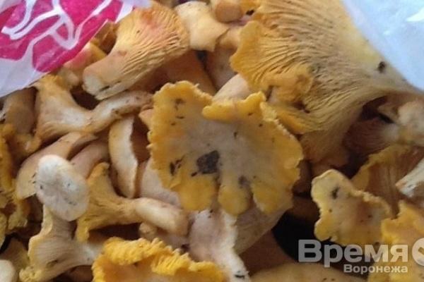 В Воронежской области уже семеро человек отравились грибами