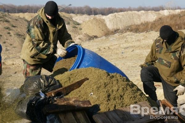 В Воронежской области изъяли 147 кг наркотиков