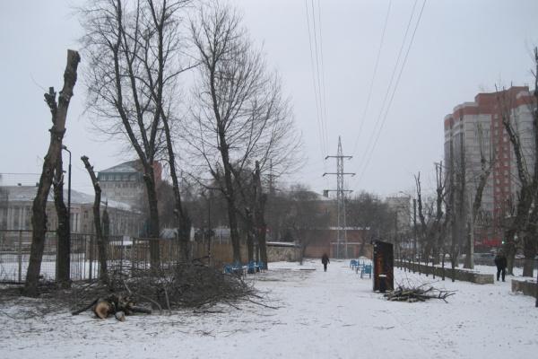 Высадят деревья, построят спортивные площадки— Комсомольский сквер благоустроят