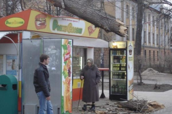 В районе СХИ дерево упало на торговый киоск
