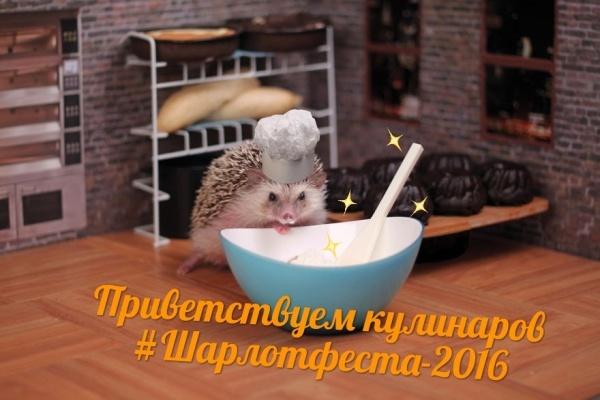 Воронежцев ждет благотворительный фестиваль шарлотки