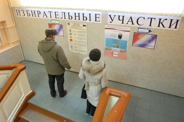 Воронежских  наблюдателей не будут выгонять с участков за избыточную численность