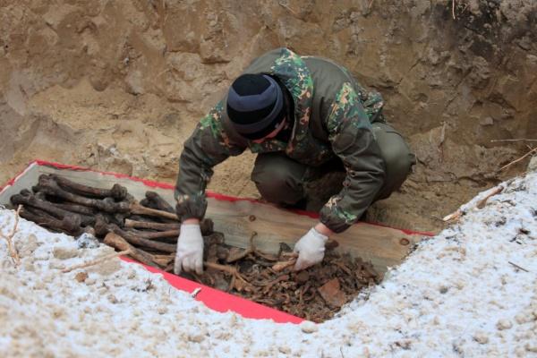 Претензии к воронежским поисковикам поставили под угрозу раскопки в Дубовке