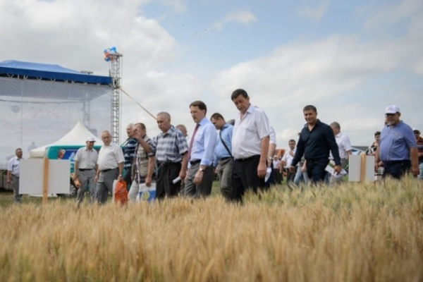 Четверть всех воронежских инвестиций пришлась на аграрный сектор