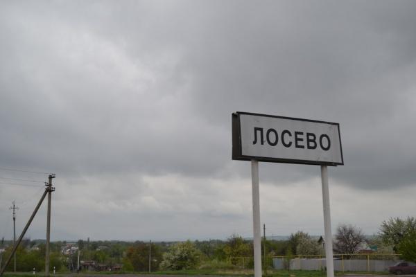 Новый платный участок трассы М-4 под Воронежем построят за 62,4 млрд рублей