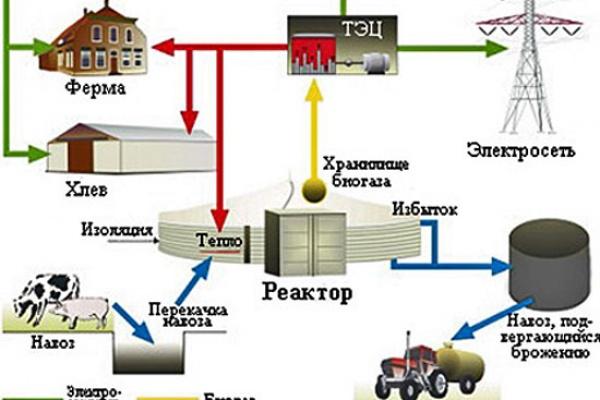 Воронежским фермерам разрешат вырабатывать  электричество из навоза
