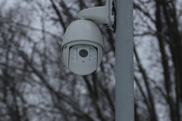 В Воронеже с помощью видеонаблюдения было раскрыто 27 преступлений
