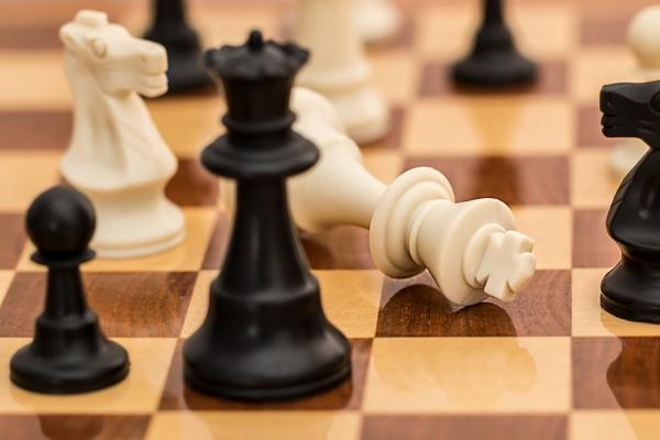 В Воронеже бывшего главного тренера по шахматам обвинили в педофилии
