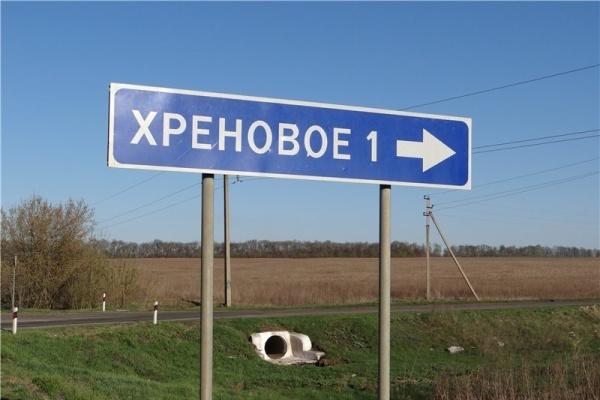Главу Новоусманского района воронежское правительство подберет не сразу