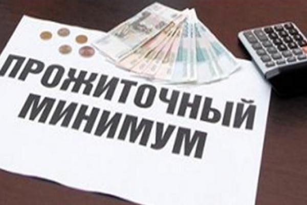 Воронежцем показали черту бедности