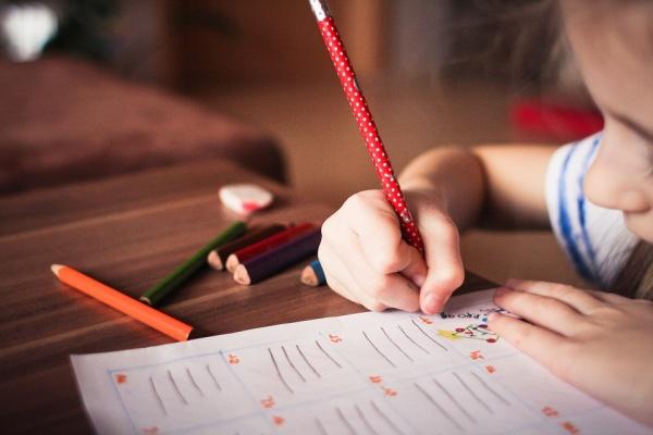 Этому в школе не учат: почему воронежцы переходят на семейное образование
