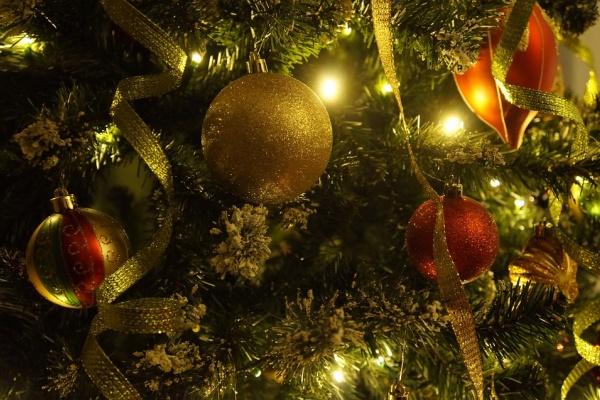 Установка новогодней елки в Воронеже обойдется в 1,8 млн рублей