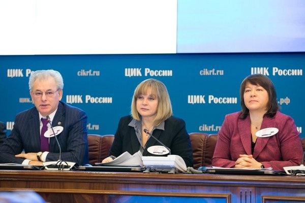 Случай в воронежском селе сделал российские выборы прозрачнее