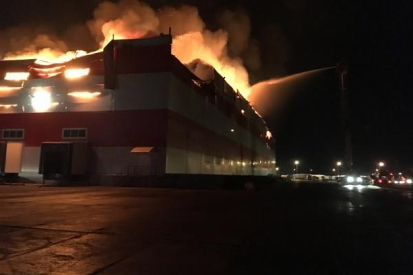 Власти назвали вероятную причину крупнейшего в Воронежской области техногенного пожара