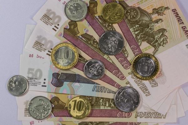 Прожиточный минимум в Воронежской области снизился до 8,6 тыс. рублей