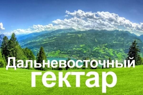 Воронежцам нужны дальневосточные участки у океана