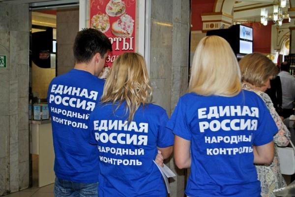 Воронежские единороссы денег на выборы не жалеют
