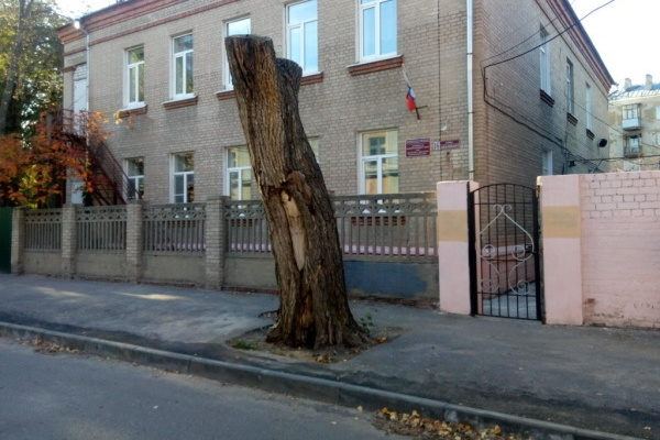 Воронежский детский сад оказался в центре скандала