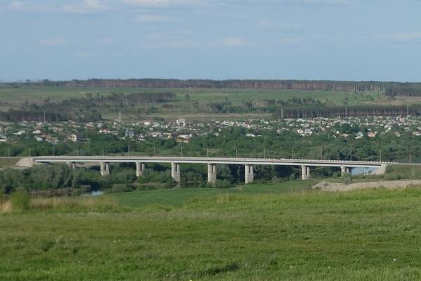 В Воронежской области спроектируют мост через реку Дон