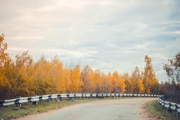 Фирма из Россоши получит почти 3 млрд рублей за содержание воронежских дорог
