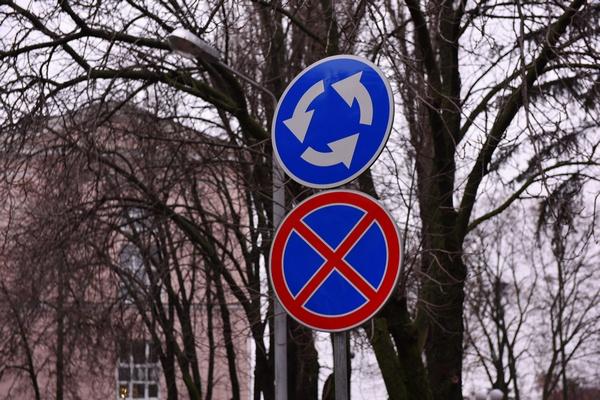 Вадим Кстенин назначил воронежское голосование на 23 марта