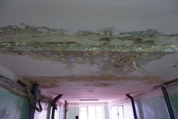 Власти Воронежа подготовят к зиме бывшее общежитие почты и ликвидируют порывы канализации в подвале