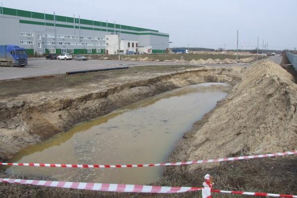 Московские экологи побывали на воронежском «токсичном озере»