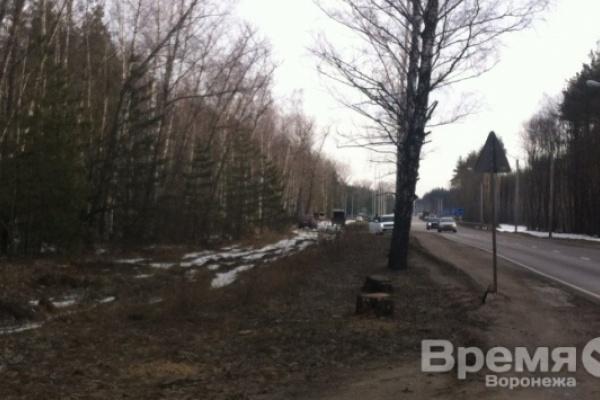 Воронежским пригородным поселкам досталось меньше половины обещанного