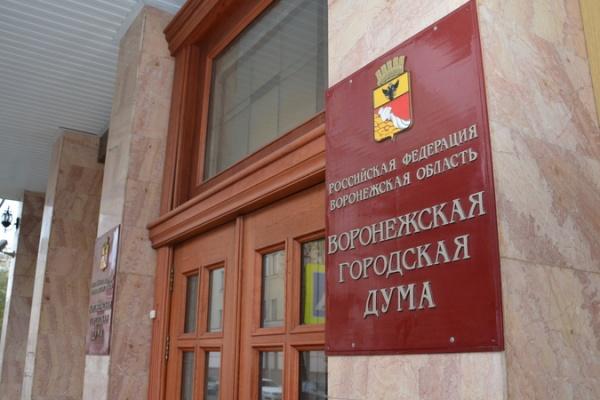Воронежские депутаты начали мэрскую процедуру