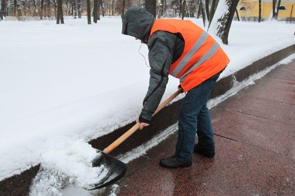 Воронежским дворникам подмоги ждать не приходится