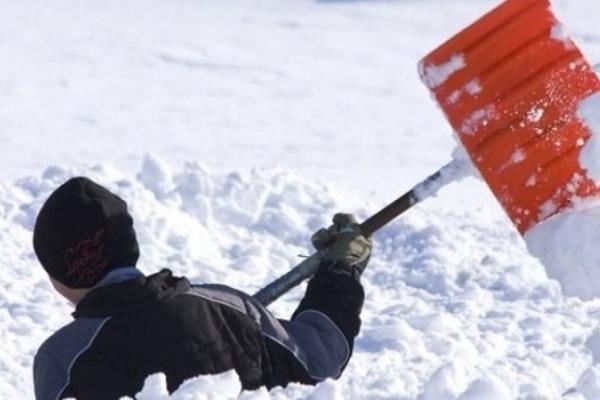 Две тысячи дворников в Воронеже не справляются со снегом