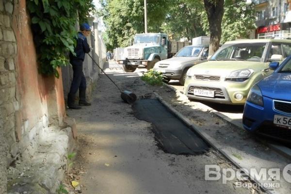 Воронежские власти уверены в своей способности истратить за полгода более 400 млн рублей