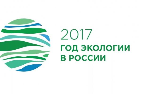 Воронежские полицейские всё реже раскрывают экологические преступления