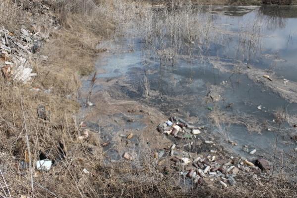 В экологическом рейтинге Воронежская область скатывает всё ниже