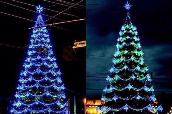 Воронежским властям опять припомнили новогоднюю елку