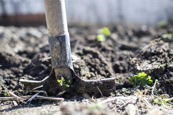 Раскопки на месте строительства школы под Воронежем обойдутся в 13,3 млн рублей