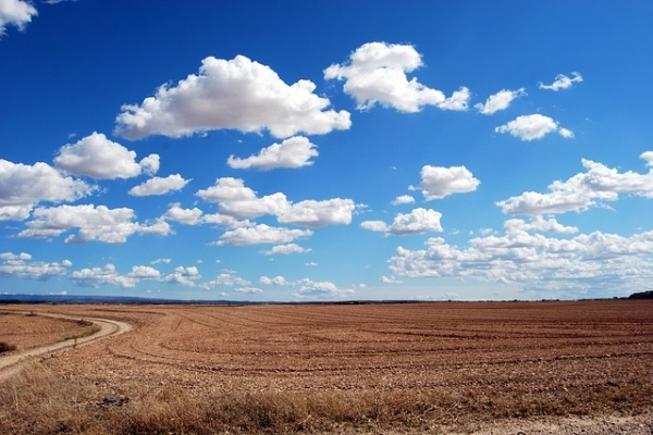 Воронежская область получила 417 млн рублей с невостребованных земель
