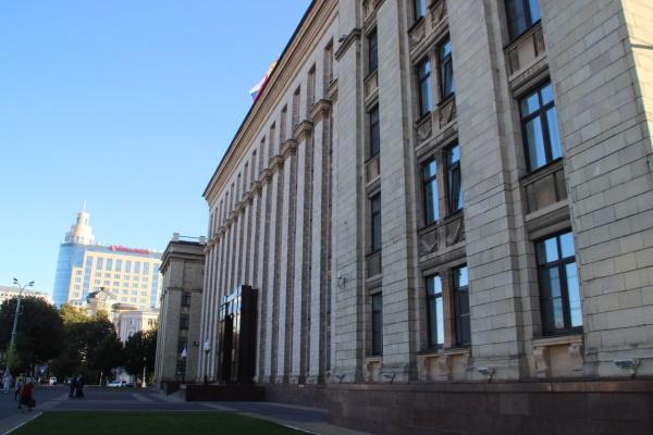 В Воронеже реализацию областной «Стратегии-2035» распланируют за 11 млн рублей