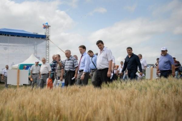 Воронежскому губернатору предложили слить сельские районы