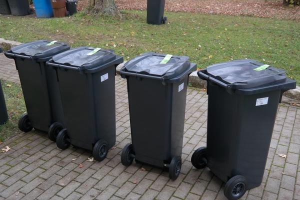 У Минприпроды нет замечаний к системе утилизации мусора в Воронежской области
