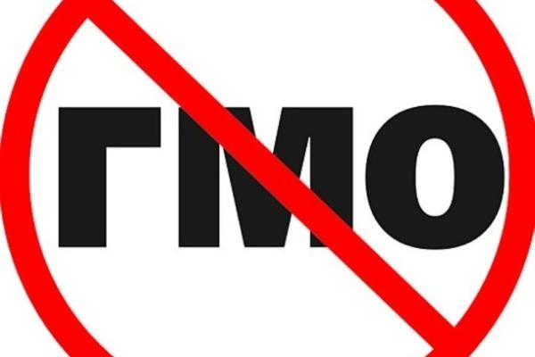 Продукты с ГМО не попадут в Воронежскую область