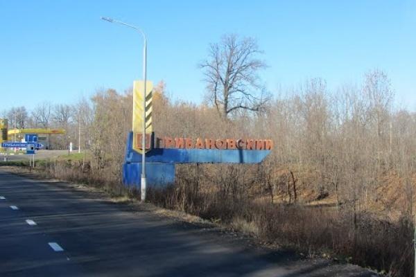 Воронежский губернатор дал предвыборный совет жителям Грибановского района