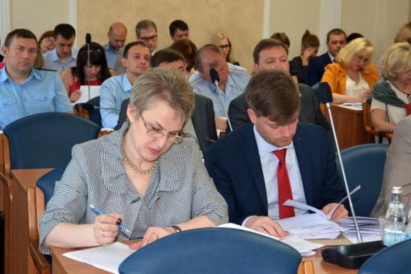 Воронежские депутаты не стали портить себе настроение перед каникулами