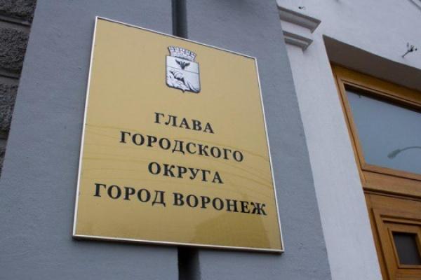 ВВоронеже отменили прямые выборы главы города