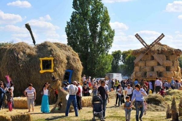 Выставка «Воронеж – город-сад» будет посвящена цветам, красоте и кино