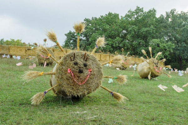 На фестиваль «Город-Сад» воронежцев повезут дешевые шаттлы
