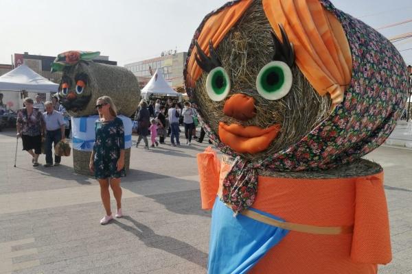 Охрана фестиваля «Город-сад» в Воронеже может обойтись в 2 млн рублей