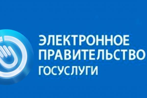 Воронеж резко отстает от своих соседей в «электронизации госуслуг»
