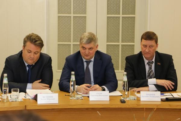Александр Гусев выбрал своего кандидата на пост воронежского мэра